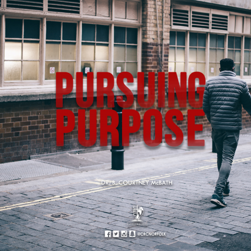 Pursuing Purpose